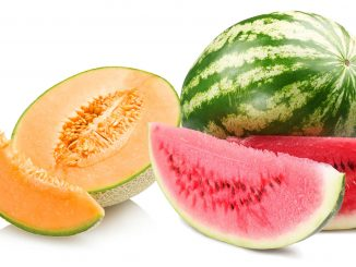 Lubenica in melona
