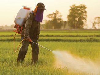 Pesticidi neplodnost