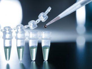 Matične celice in zdravljenje z matičnimi celicami